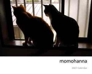 Momohanna_cal_2007